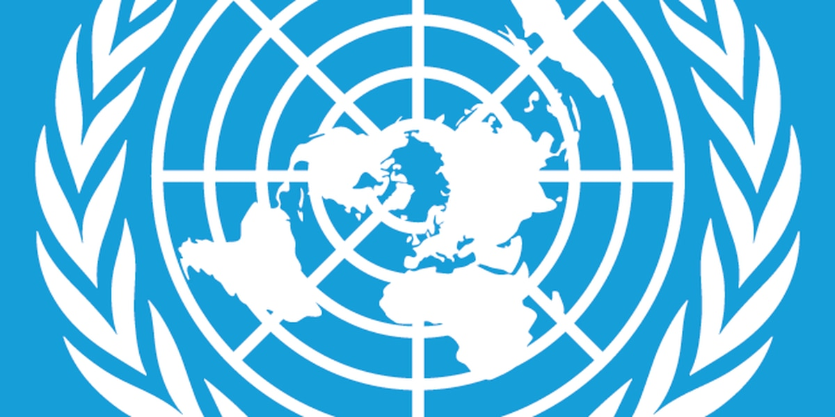 ONU: Servicio global de transporte de ayuda sería suspendido