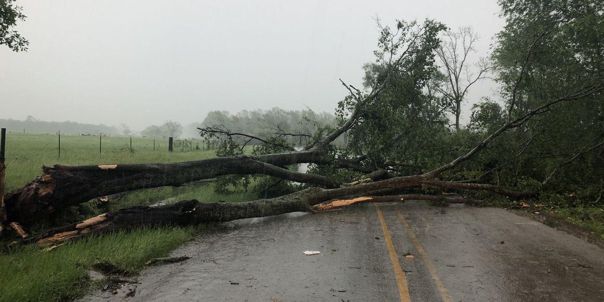 Cancela todas las alertas y advertencias climáticas en efecto por partes del Este de Texas