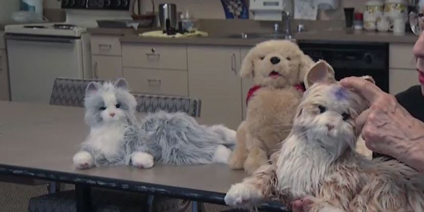 'It is peace': Robotic pets bring calm to assisted living patients